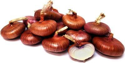 RED CIPPOLINI ONION - ORGANIC