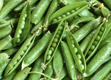GREEN ARROW HEIRLOOM PEAS