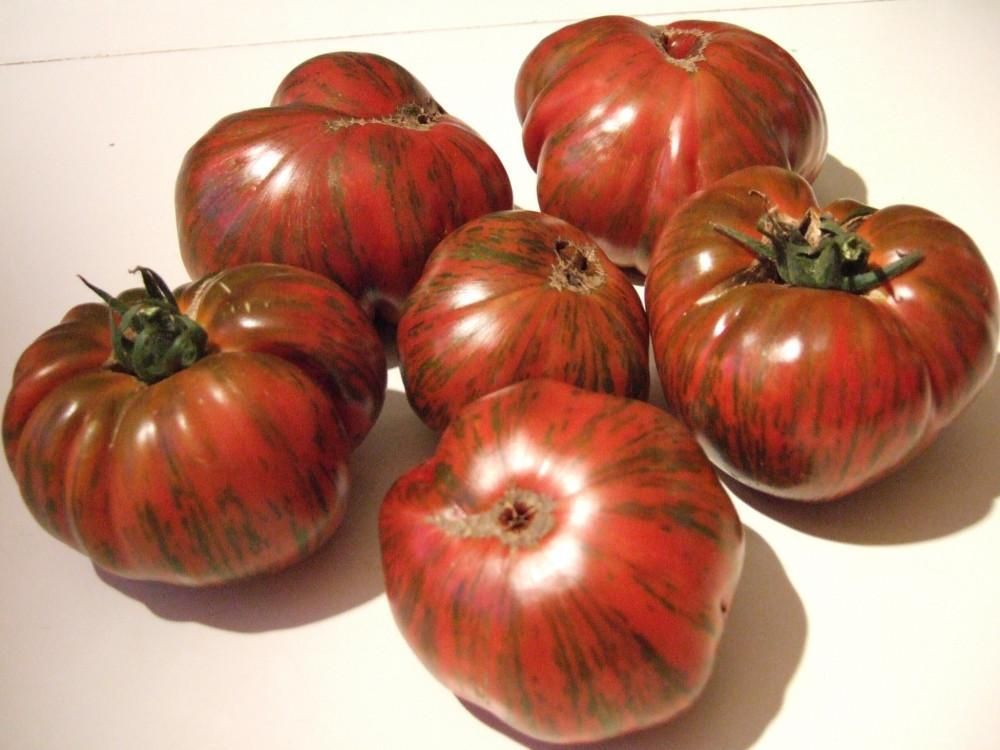 CHOCOLATE STRIPE TOMATO