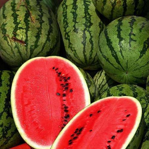 ALL SWEET WATERMELON