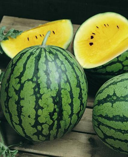 CRIMSON YELLOW WATERMELON