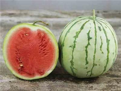 DIXIE QUEEN WATERMELON - ORGANIC