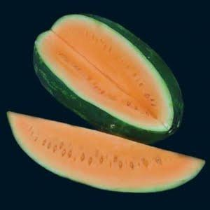 ORANGE TENDERSWEET WATERMELON - ORGANIC