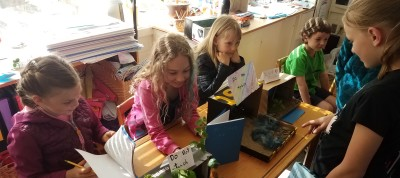 2nd graders present their research projects [click image to see entire picture]