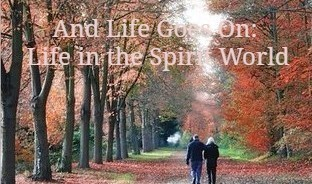 And Life Goes On: Life in the Spirit World