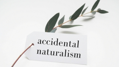 Accidental Naturalism