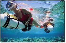 Snorkeling & Torpedo