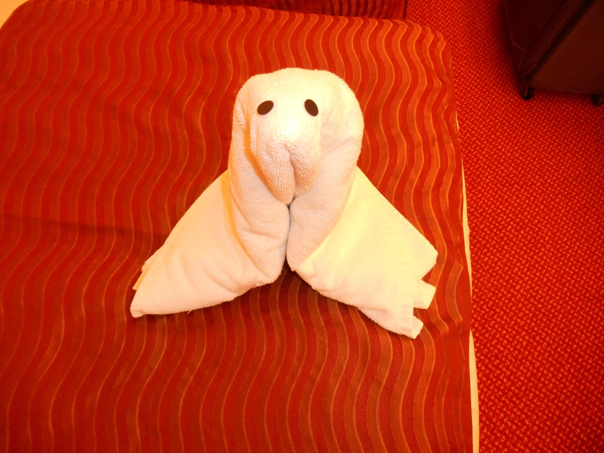towel animals, carnival magic
