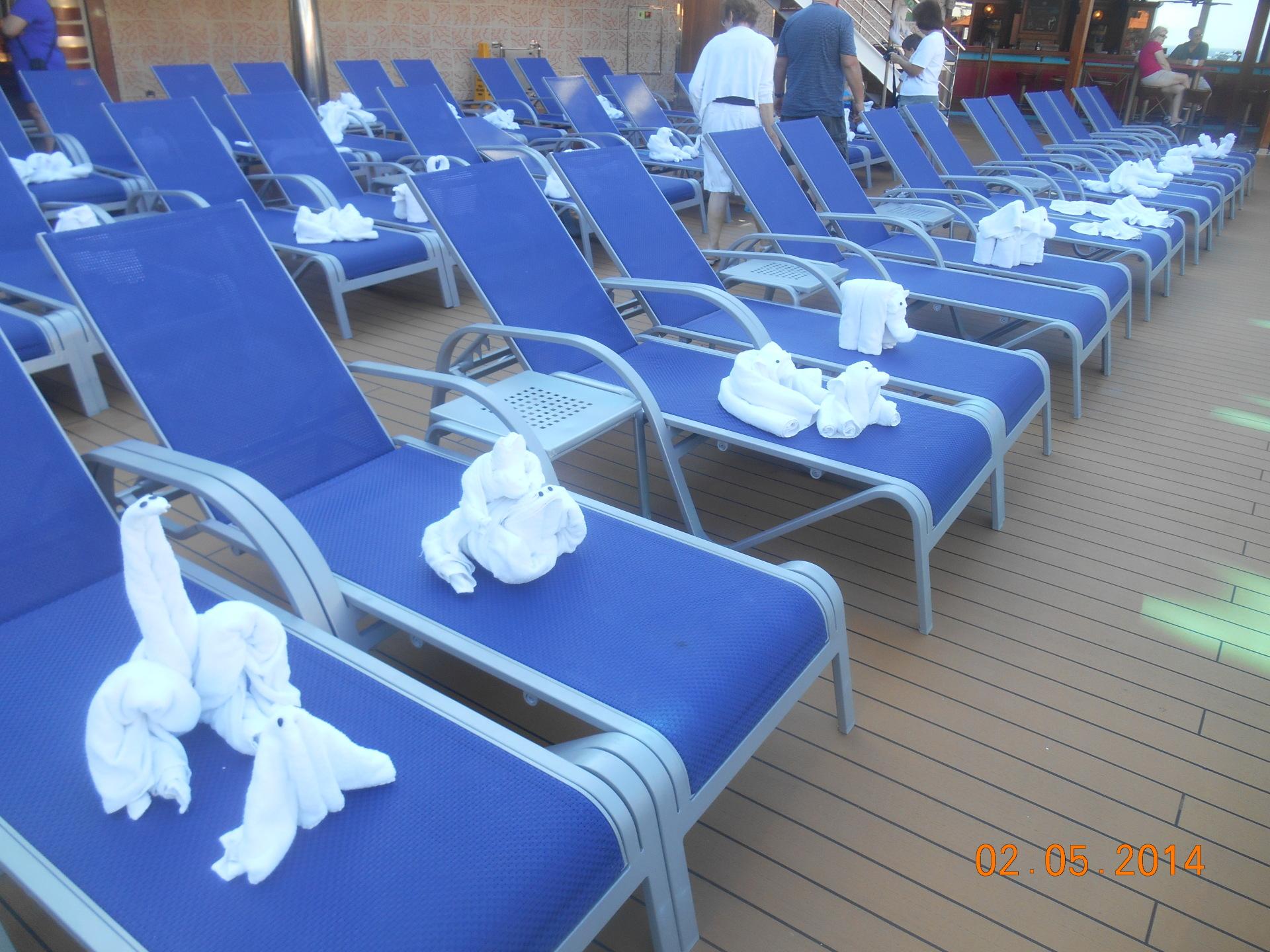 carnival dream towel animals
