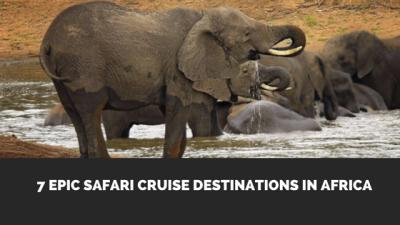 Africa River Cruises