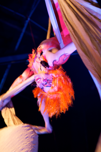 Aerialist - Fairy tale themed corporate client appreciation event