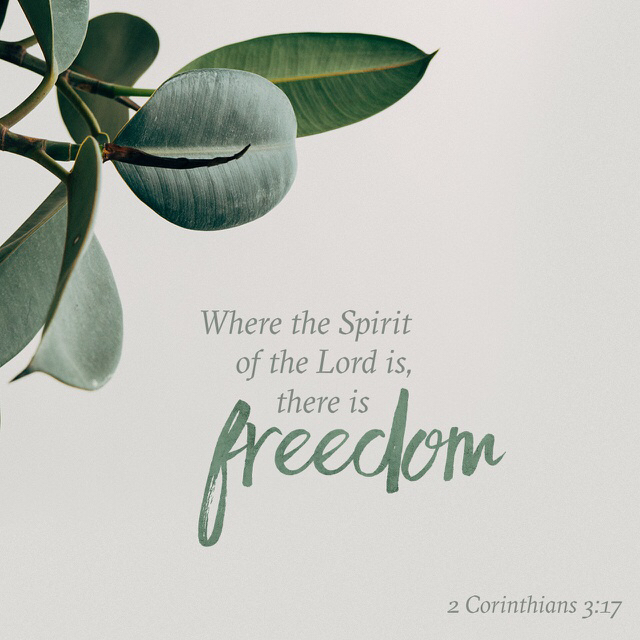 Find Freedom!