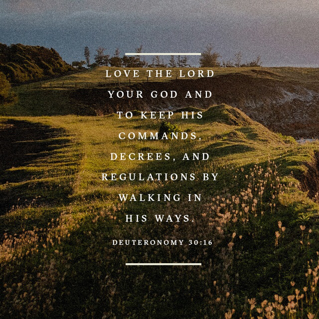 Loving The Lord