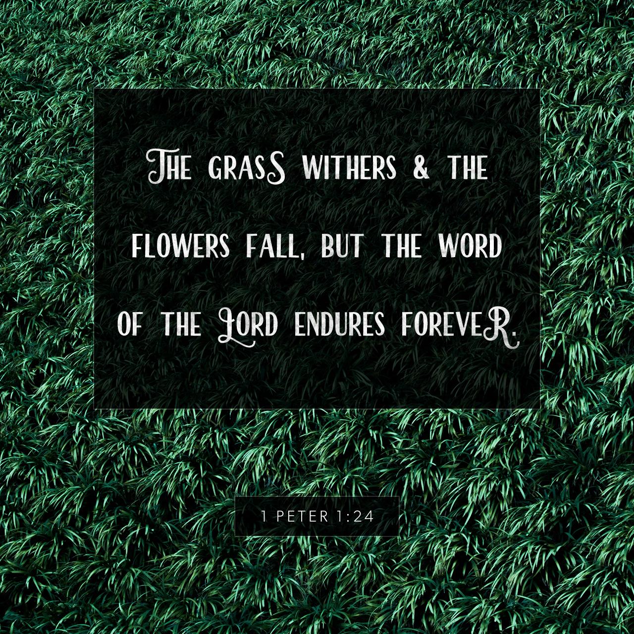 Lasting Forever