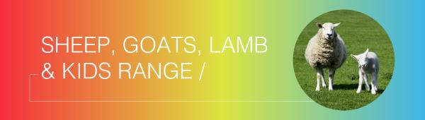 Sheep, Goats, Lamb & Kids Range