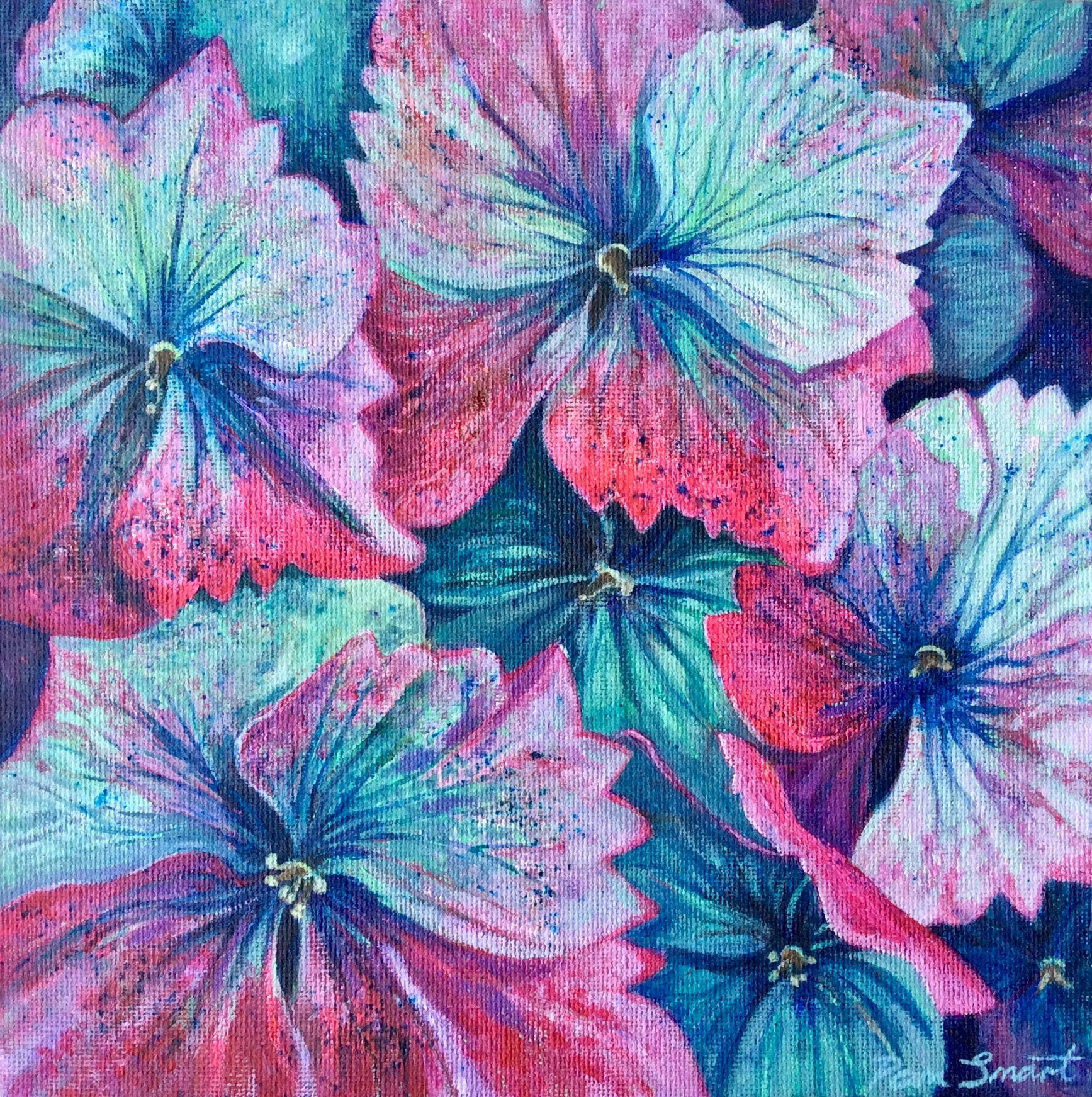 Pink and Green Hydrangeas