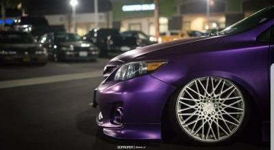purple corolla