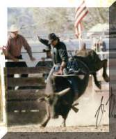 Kernville, C.A. Rodeo in 10-08-94