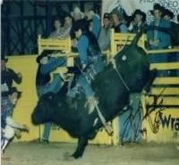 Professional Rodeo Cowboys Association P.R.C.A.