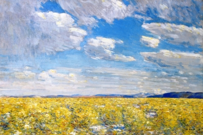 Afternoon Sky, Harney Desert