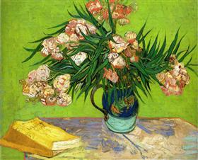 Oleanders and Books