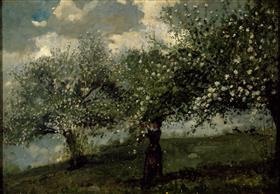 Girl Picking Apple Blossoms