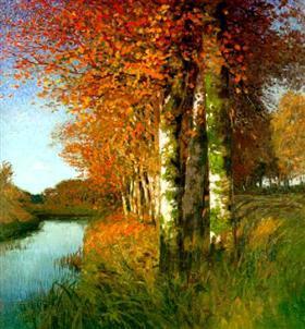 Birken am Moorgraben