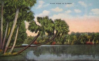 FL-114 River Scene