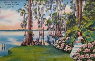 FL-129 Cypress Gardens