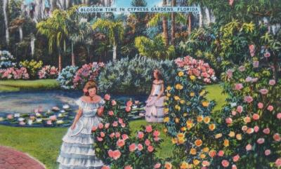 FL-154 Cypress Gardens