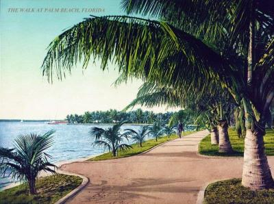 FL-158 Palm Beach