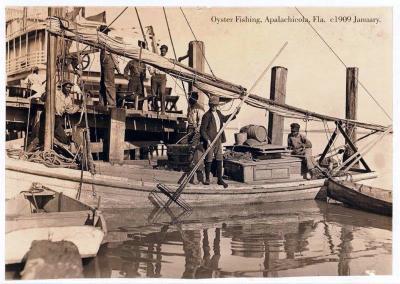 FL-205 Oyster Fishing, Apalachicola