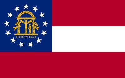 GA-100 State Flag