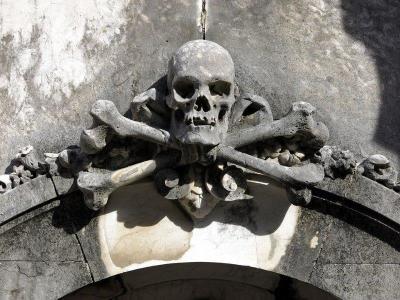 PIR-111 Skull carving