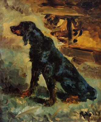 Dun, a Gordon Setter Belonging to Comte Alphonse de Toulouse Lautrec