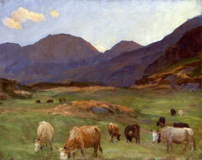 Cattle Grazing in the Tyrol