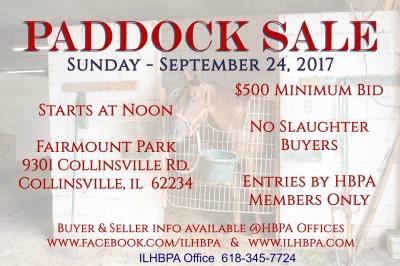 Paddock Sale