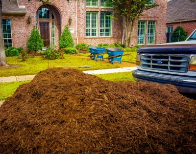 Mulch, Plants, Trees, Shrubs