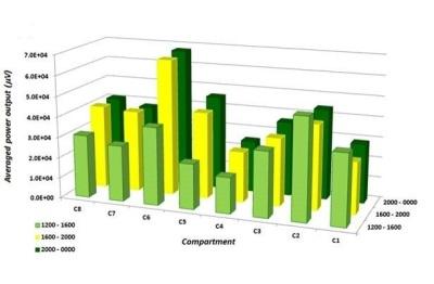 Strategic Data Insights