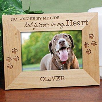 Grief After the Death of a Beloved Pet