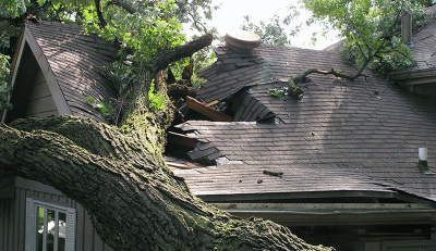 Storm Damage Repair & Flood Remediation