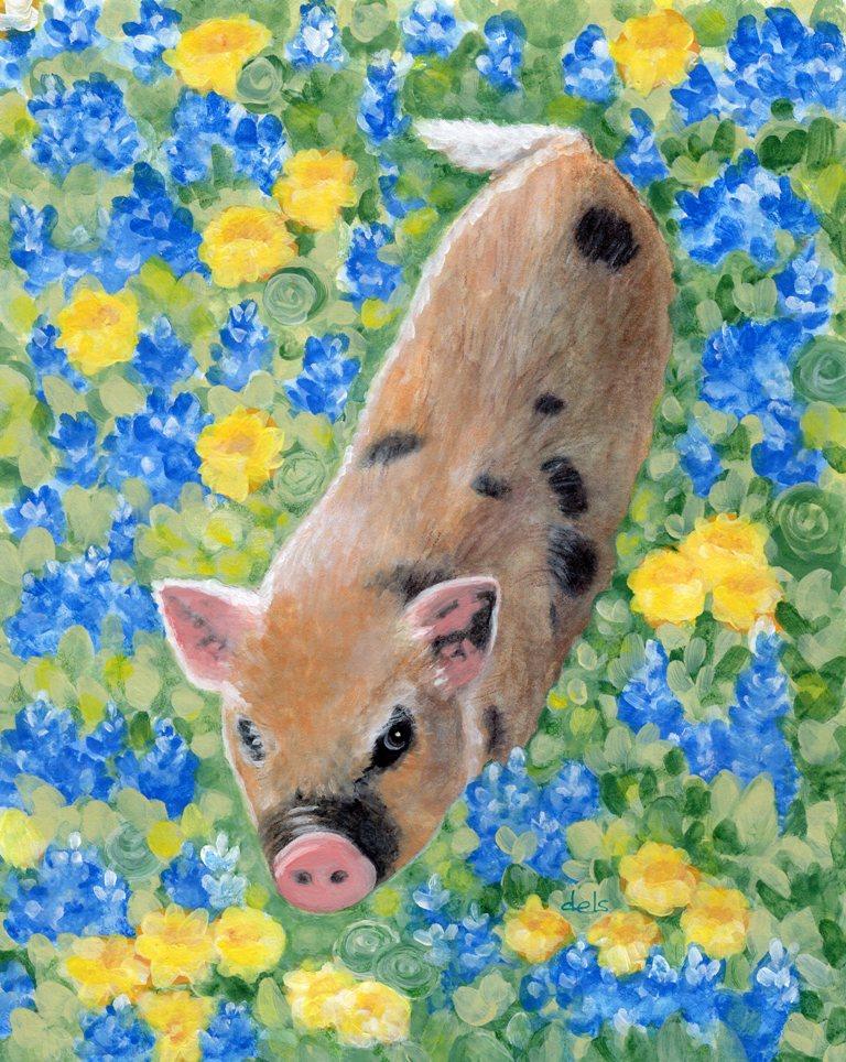 MILO~KUNEKUNE PIG