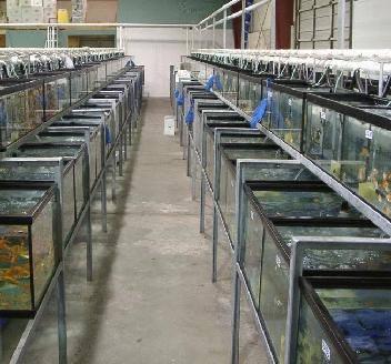 Quality Pets Inc. Warehouse