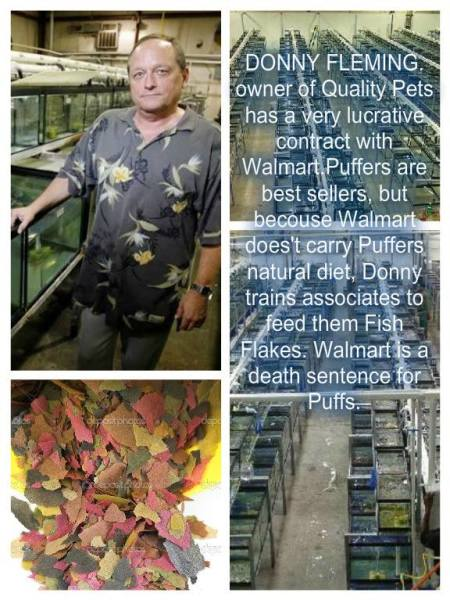 Danny Flemming owner Quality Pets Inc and the Tatted Fish Raid.