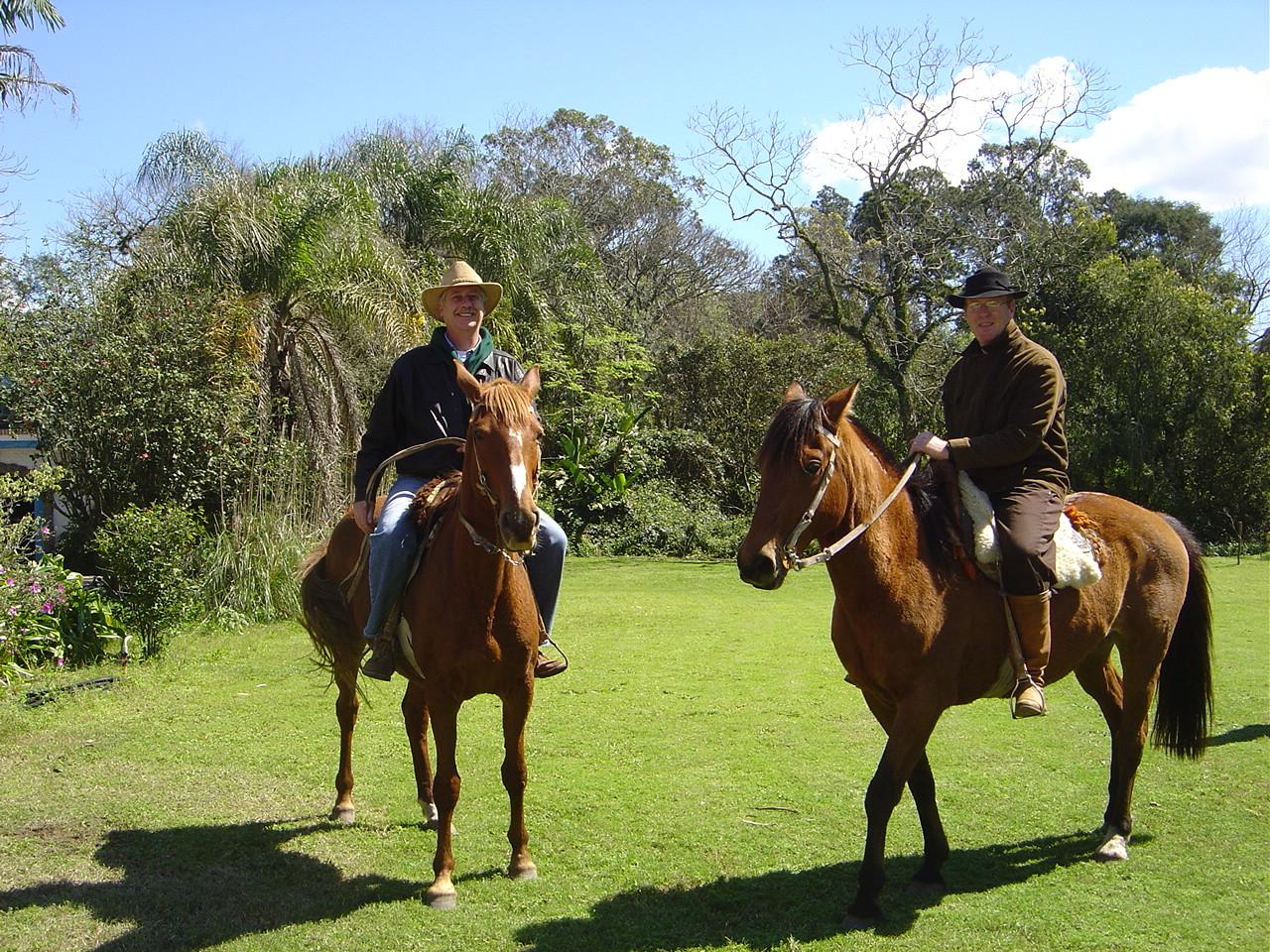 Cavalos para montaria