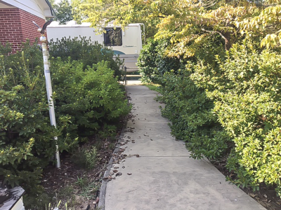 Sidewalk to Backyard Before
