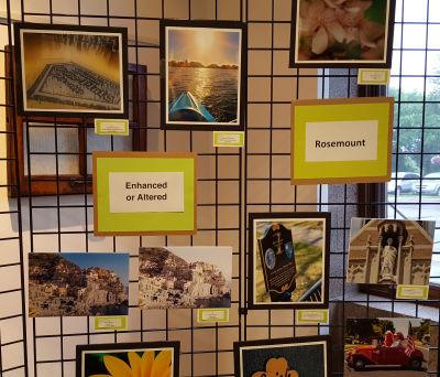 Photo Contest - Rosemount and Enhanced