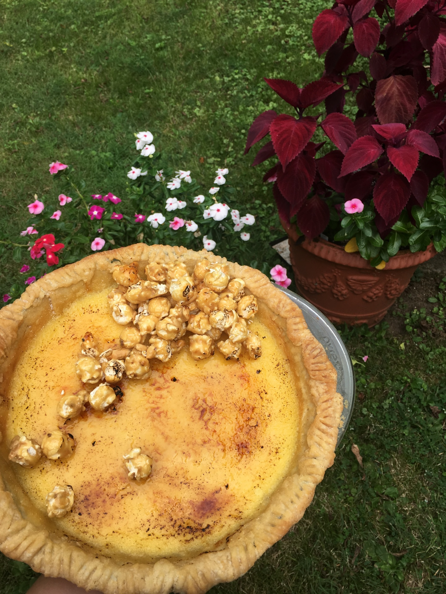 Summer Caramel Corn Custard Pie