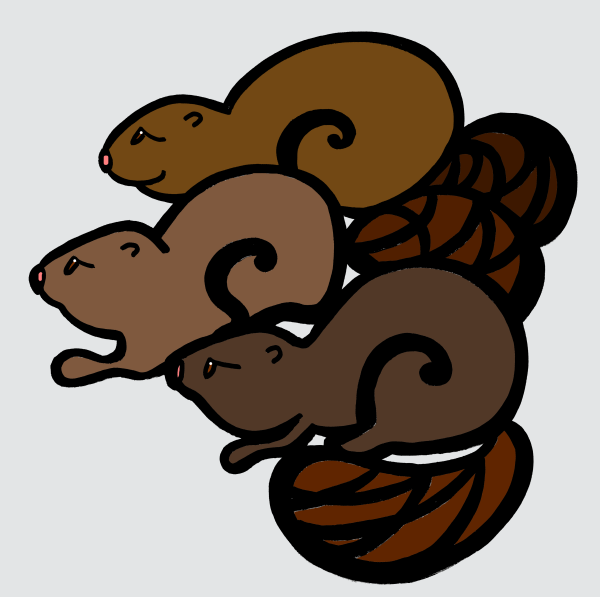 Three Beavers