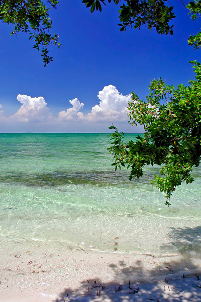 """Elliot Beach"""